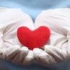 สมดุล หัวใจ