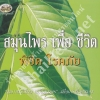 Book of Thai Herbs - Abhaiherb