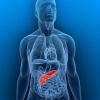 โรคเบาหวาน หายขาดได้ด้วยการ ฟื้นฟูตับอ่อน1