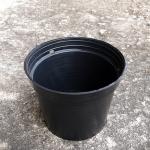 กระถางพลาสติกดำ ขนาด 4 นิ้ว จำนวน 10ใบ