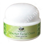 Cucumber Facial Cream with Vitamin E - Abhaiherb
