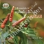 Herb Journal 6 - Abhaiherb thumbnail 1