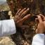 กำยาน เม็ดกำยาน เรซิ่น อโรม่า Frankincense Resin Gum Tear แท้ 100% จากประเทศโอมาน Oman กลิ่นหอมสะอาด ลดความเครียด แก้โรคภูมิแพ้ หอบหืด ไซนัส ไข้หวัด ช่วยฟอกอากาศ บำรุงผิว ลดเรือนริ้วรอย แก้ปวด บวม ไขข้ออักเสบ เสริมสร้างเซลและภูมิคุ้มกัน 50 g thumbnail 7